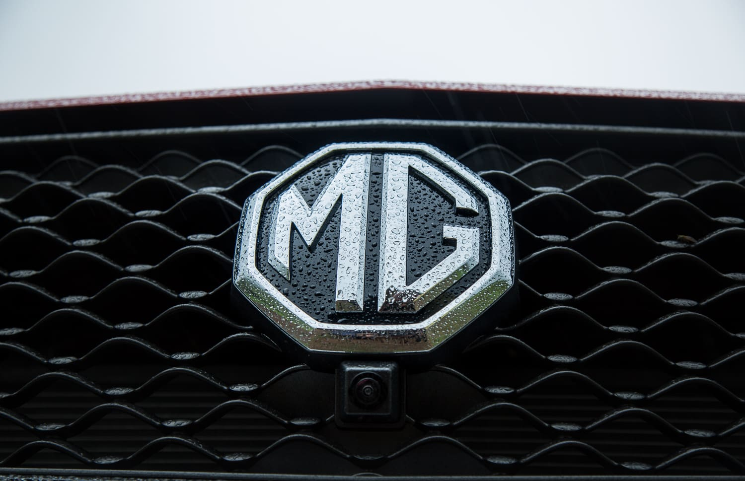 MG Customers: What They Have To Say About The Brand