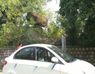 2012 Maruti SX4 Celebration Diesel